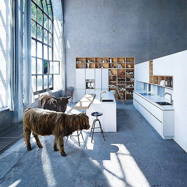 Campagne 5: Een keuken, die het thema bibliotheek en runderen