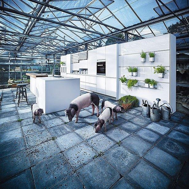 Campagne 6: Keuken met Schwäbisch-Hällische landvarkens