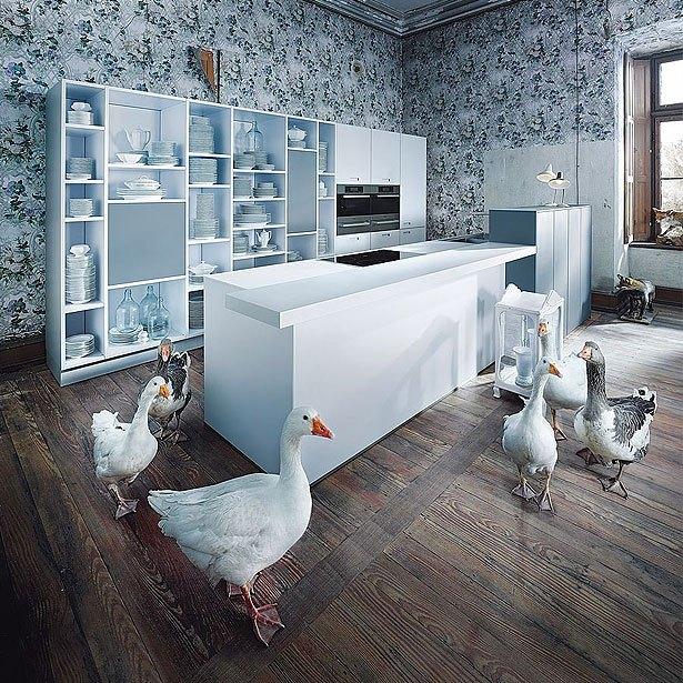 Campagne met een witte kubistische keuken en ganzen